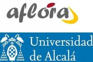 UAH+AFLORA