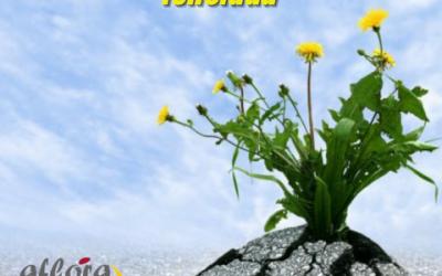 Cómo la resiliencia potencia la felicidad